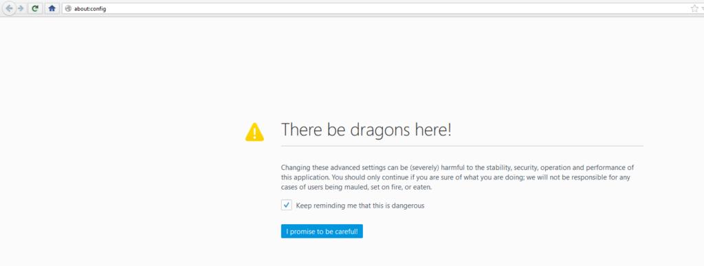 Screenshot. Warnung beim Aufruf von about:config.