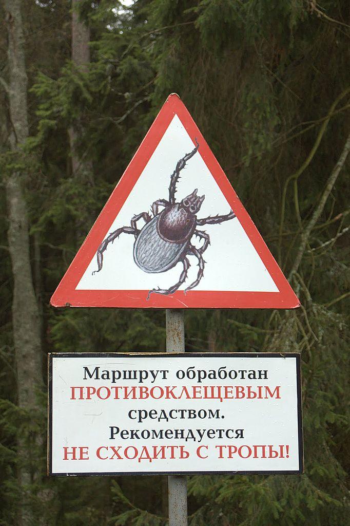 Russisches Zeckenwarnschild