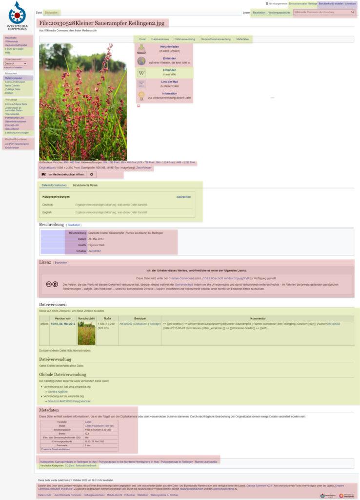 Screenshot: Wichtige Bereiche einer Wikimedia-Commons Seite